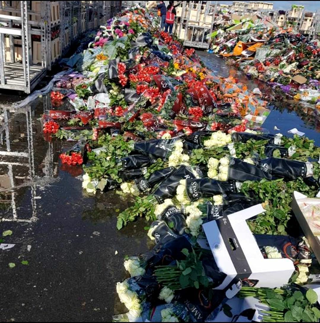 Covid-19: Bursa de flori din Olanda s-a prăbușit.