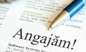AJOFM Dâmbovița: 283 de locuri de muncă disponibile  pentru persoanele aflate în căutarea unui loc de muncă