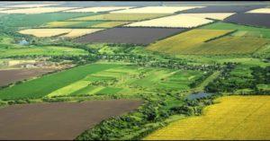 Vezi care sunt noile condiții pentru a cumpăra sau vinde pământ în România