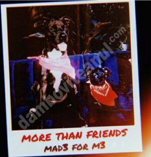 Trupa MAD3 FOR M3 aduce un sound original și lansează primul single,More than friends