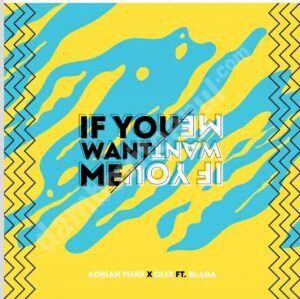 Adrian Funk și OLiX lansează primul lor single,If You Want Me, feat. Blaga