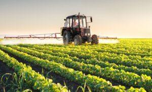 S-a dat legea! Fermierii din cooperative sunt scutiți de plata impozitului pe clădiri și terenuri