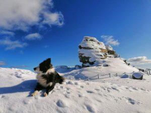 ATENȚIE: Risc mare de avalanșa în Munții Bucegi, Baiului și Ciucas