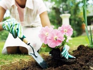 Lucrări în grădina de flori pe care trebuie să le facem în luna martie