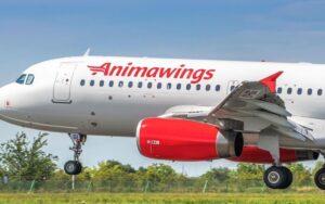 Animawings, cea mai nouă companie aeriană din România, își mărește flota