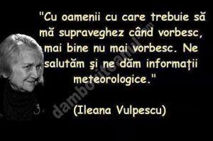"""Ionuț Vulpescu, deputat PSD de Dâmbovița: """"cu Ileana Vulpescu se duce o lume care credea în literatură, în subtilitățile limbii române, în tainele de dincolo de cuvinte"""""""