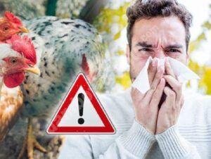 Gripa aviară suspendă comerțul ambulant cu păsări, pentru 30 de zile