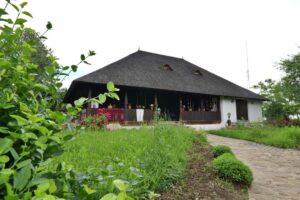 Vizitează Muzeul ,, Crama 1777″ din Valea Călugărească- locul unde vinul își spune povestea