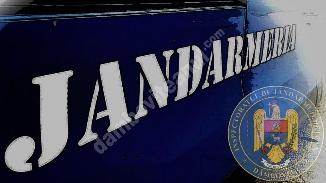 Jandarmii dâmbovițeni vor fi prezenți la manifestările dedicate Zilei Eroilor