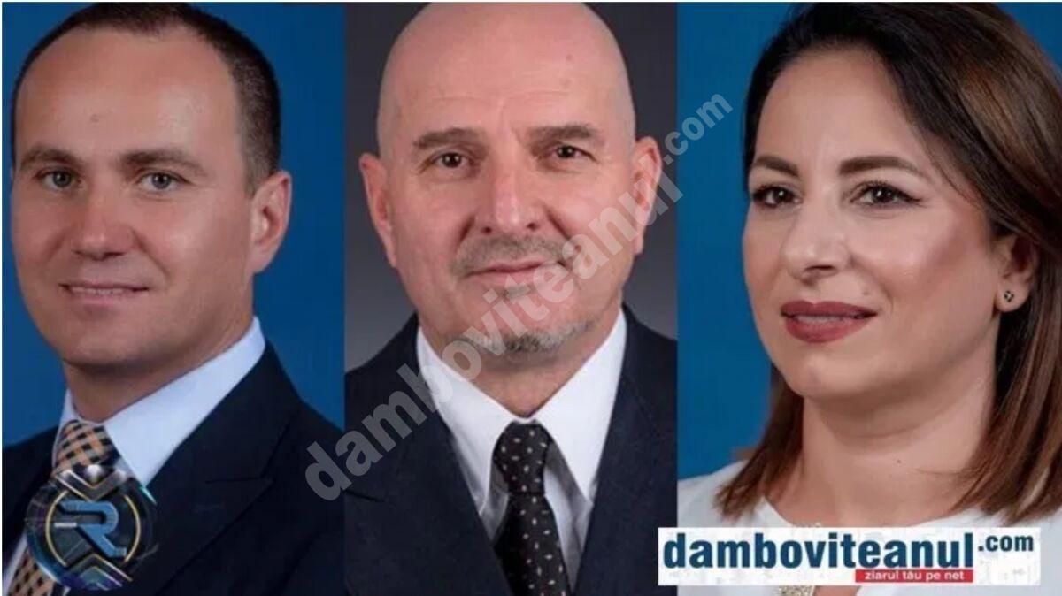 Trei candidați s-au înscris în bătălia pentru funcția de președinte PNL Târgoviște