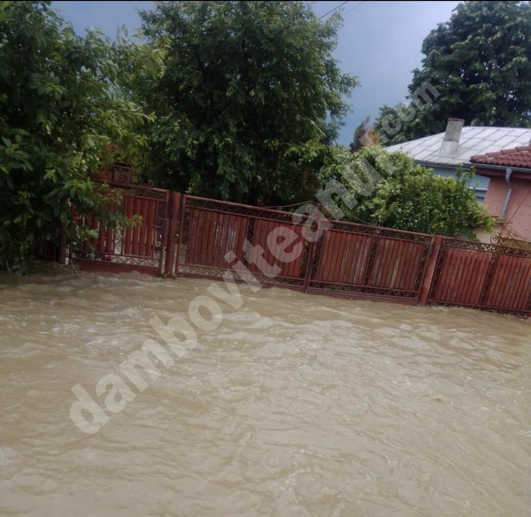 Localități dâmbovițene lovite de viitură! Apa a năvălit în gospodării!