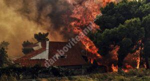 Read more about the article Mai multe hoteluri de pe insula Samos, evacuate, din cauza unui incendiu puternic