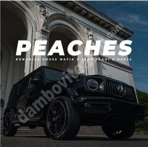 """Read more about the article Romanian House Mafia în colaborare cu Jade Shadi și Nadja lansează un nou remake al piesei """"Peaches"""""""