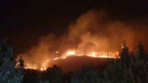 Read more about the article Incendii devastatoare în Sicilia. O plajă a fost distrusă, focul ajungând până în centrul orașului Catania
