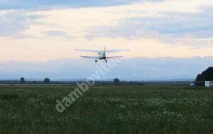 Read more about the article CORBII MARI: Se vor efectua acțiuni de combatere a insectelor, prin pulverizări aeriene